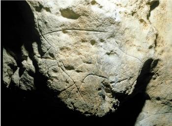 Bisonte grabado en el abrigo de Santo Adriano. © Javier Fortea. Principado de Asturias, Consejería de Cultura