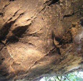 Cierva en perfil derecho grabada en Cueva Pequeña. © Centro UCM-ISCII de Evolución y Comportamiento Humanos