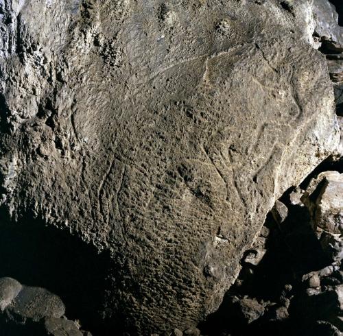 Bisonte grabado en la cueva de Coimbre. © Equipo Norte, Ministerio de Educación y Cultura