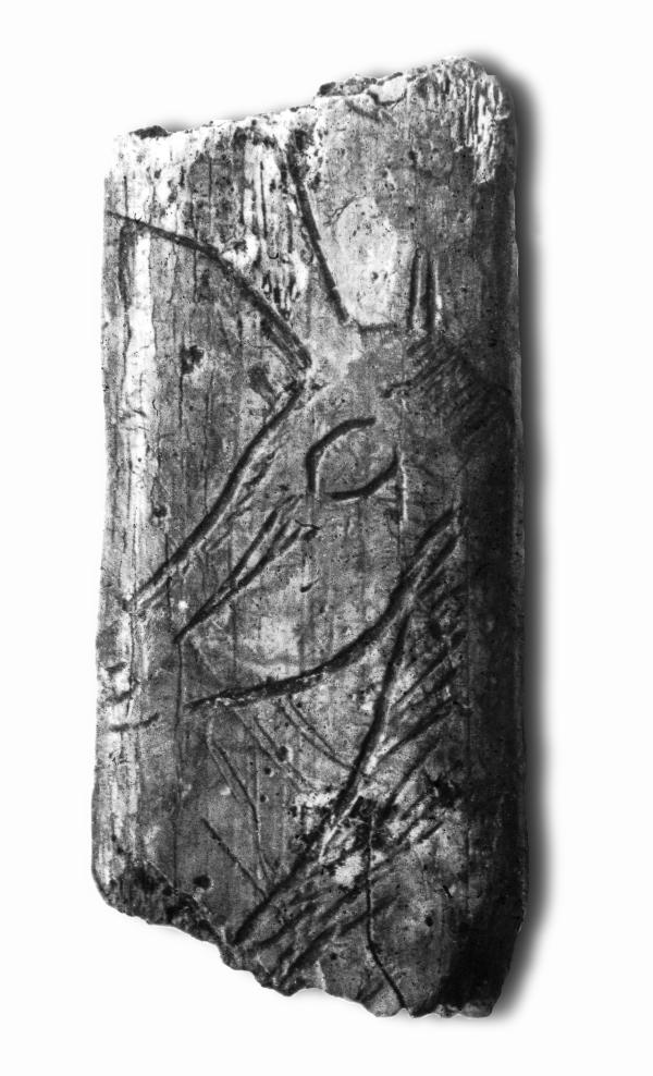 Costilla grabada con la representación de un rebeco, procedente de la cueva de Collubil. © Manuel R. González Morales