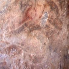 Oso en el Muro de los Grabados. © Texnai. Principado de Asturias, Consejería de Cultura