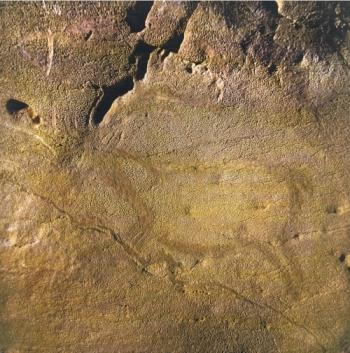 Reno grabado en La Covaciella. © Javier Fortea, Principado de Asturias, Consejería de Cultura