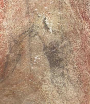 Reno vareto representado en la cueva de Llonín. © L. G. Straus, Principado de Asturias, Consejería de Cultura
