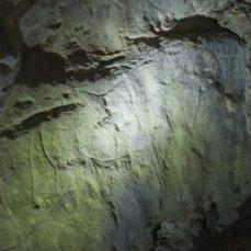 Bisonte grabado en el abrigo de la Lluera. © Sergio Ríos, Principado de Asturias, Consejería de Cultura