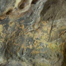 Caballo grabado en la Gran Hornacina del abrigo de la Lluera. © Sergio Ríos, Principado de Asturias, Consejería de Cultura