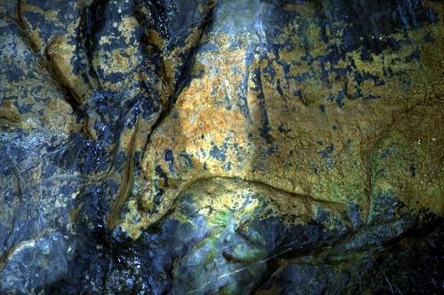 Uro grabado en la Gran Hornacina del abrigo de la Lluera: detalle. © Texnai, Principado de Asturias, Consejería de Cultura