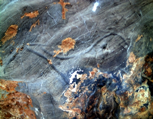 Cierva grabada en la Gran Hornacina del abrigo de la Lluera. © Texnai, Principado de Asturias, Consejería de Cultura