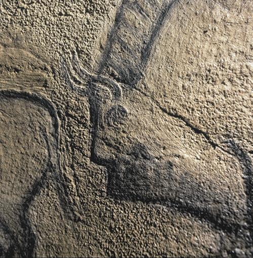 La Covaciella, detalle del panel principal. © Javier Fortea. Principado de Asturias, Consejería de Cultura