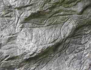 Caballo grabado en el abrigo de la Lluera. © Sergio Ríos, Principado de Asturias, Consejería de Cultura