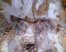 Caballo del Talud de la Peña de Candamo. © Texnai, Principado de Asturias, Consejería de Cultura