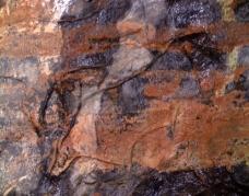 Uro grabado en la Gran Hornacina del abrigo de la Lluera. © Texnai, Principado de Asturias, Consejería de Cultura
