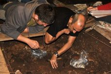Se han realizado excavaciones sistemáticas desde el año 2008, dirigidas por el arqueólogo David Álvarez Alonso. © Equipo investigador de Coímbre, Fundación María Cristina Masaveu Peterson
