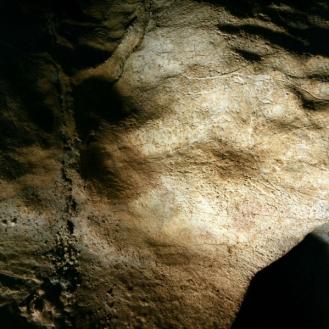 Cabra grabada en el llamado conjunto E de Coímbre. © Equipo Norte, Ministerio de Educación y Cultura.