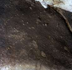 Signos grabados del conjunto A de Coímbre. © Equipo Norte, Ministerio de Educación y Cultura.