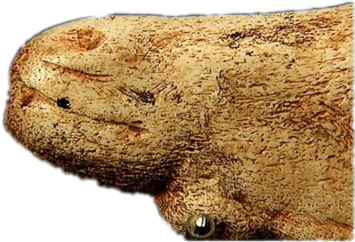 Detalle de la boca y ollar en el anverso de la escultura-colgante de Tito Bustillo © Texnai, Museo Arqueológico de Asturias
