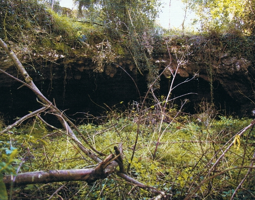 Abrigo de entrada a la cueva de Herrerías. © César García de Castro y Sergio Ríos