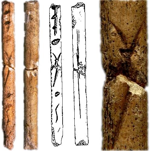 Varilla de Sofoxó, con decoración de estilización de cabra en perspectiva frontal. De izquierda a derecha: vista de anverso y reverso, calco y detalle del motivo decorativo © Texnai, Museo Arqueológico de Asturias
