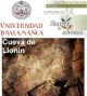 Llonín: visita virtual
