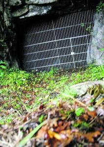 Entrada de la cueva de Les Pedroses. © López de Arenosa, La Nueva España
