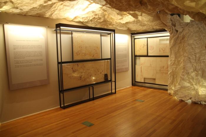 """Vista de la exposición """"Arte y Naturaleza en la Prehistoria"""", en el MNCN © Begoña Sánchez, IPC"""