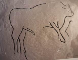 Bisonte de Coímbre. Calco de 2017